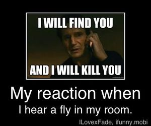 fly, funny, and lol image