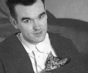 kitten, smiths, and morosely image