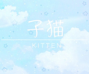 blue, kawaii, and kitten image