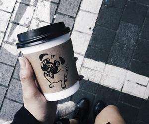 coffee, dog, and pug image