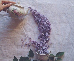 flowers, tea, and purple image