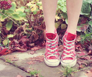 shoes, pink, and converse image
