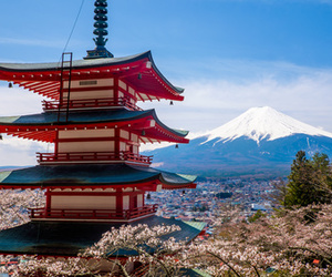 beautiful, fuji, and japan image