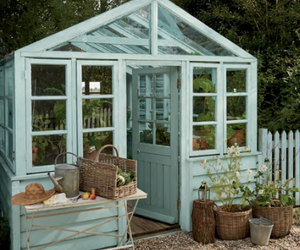 garden, greenhouse, and growing image