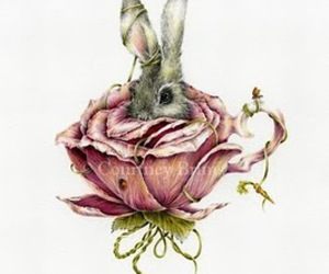rose, rabbit, and bunny image