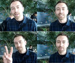 rise against and tim mcilrath image