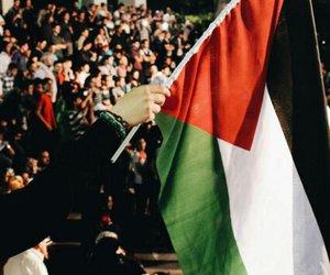 palestine, علمً, and فلسطين image