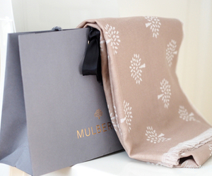 fashion, mulberry, and scarf image