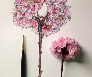 art, flower, and sketch image