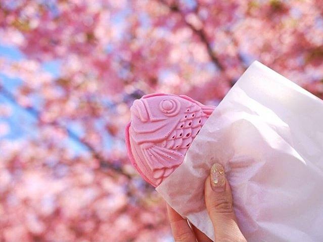 food, japan, and pink image