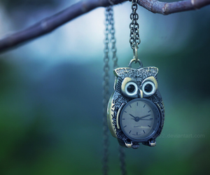 owl, cute, and clock image