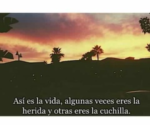 frases, wound, and vida image