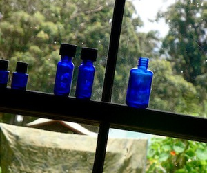 blue and bottles image