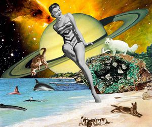 cat, cats, and eugenia loli image