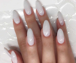 almond, chic, and claws image