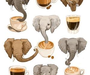 coffee and elephant image