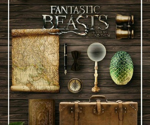 harry potter, newt scamander, and fantastic beasts image