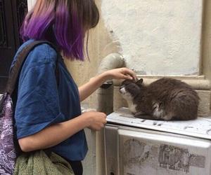 cat, grunge, and tumblr image