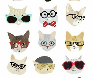 background, cats, and glasses image