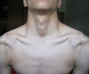 body, neck, and pale image
