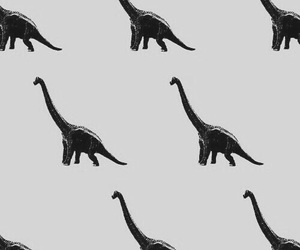 dinosaur, wallpaper, and background image