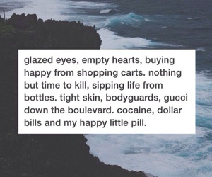troye sivan, happy little pill, and quote image