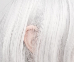 hair, white, and ear image