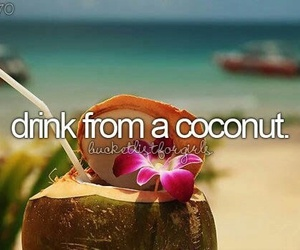 coconuts, goals, and bucket list image
