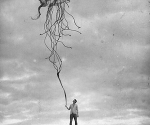 black and white, jellyfish, and man image