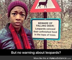 funny, deer, and leopard image