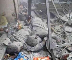 حلب image