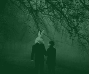 dark and rabbit image