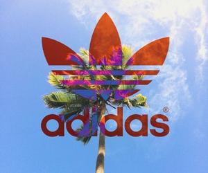 adidas, palm tree, and sun image