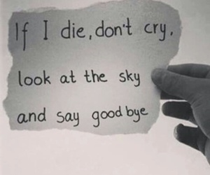 sky, die, and cry image