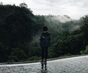 forest, traveling, and awesome image