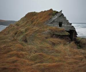 coast, grass, and house image
