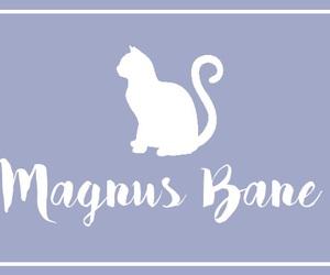 magnus bane and shadowhunters image