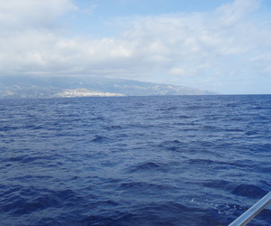 blue, madeira, and ocean image