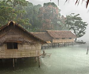 nature, rain, and theme image