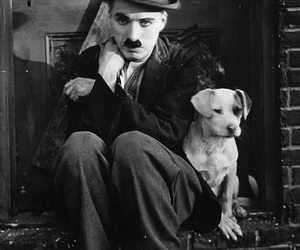 black and white, dog, and charles chaplin image