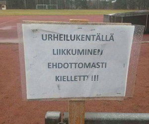 finland, finnish, and funny image
