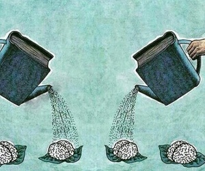 book, brain, and art image