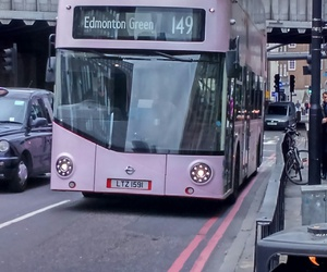 london, rose, and double decker image