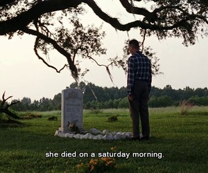 film, forrest gump, and iconic image