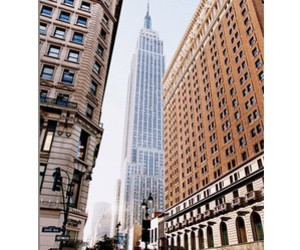 america, big apple, and buildings image