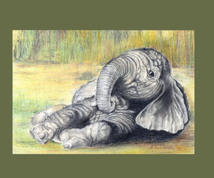 baby elephant, lovely, and drawing image