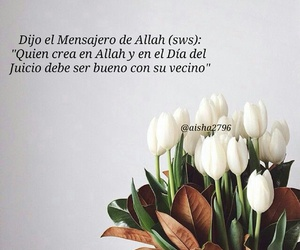 allah, quote, and frases image