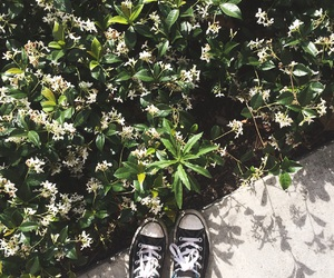flowers, converse, and los angeles image