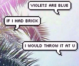 funny, rose, and violet image