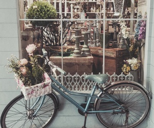 bicycle, flowers, and mall image